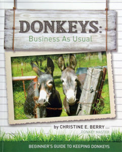 DONKEY SHOP Book 1 copy