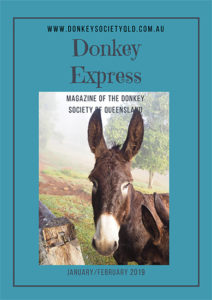 Donkey Express Jan/Feb 2019